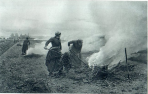 French Women Burning grass fields 1800s