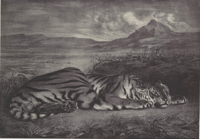 Eugene Delacroix, Royal Tiger, 1829