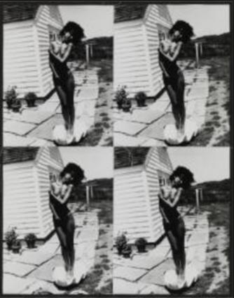 Andy Warhol, Venus in Shell, 1986